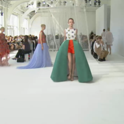 The Dream of Delpozo