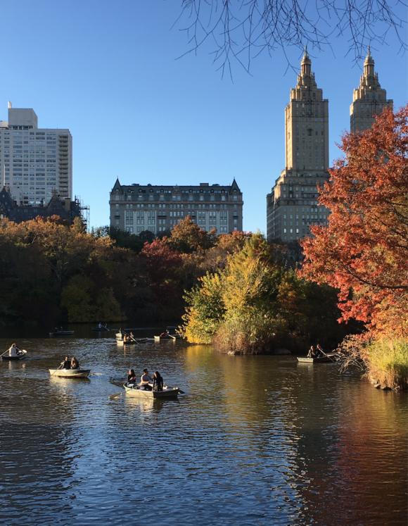 The pond Central Park