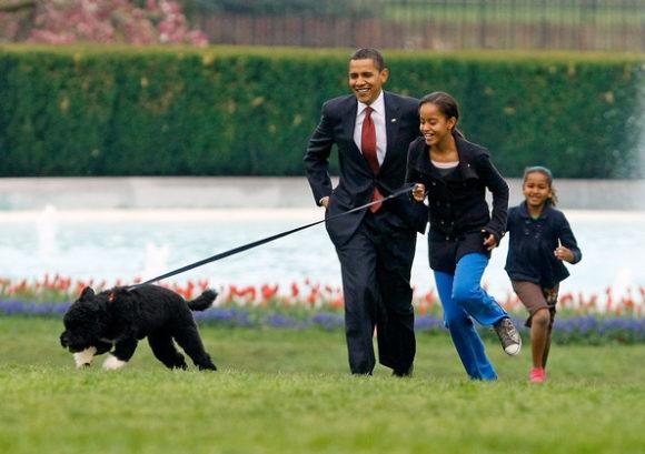 White+House+Debuts+Obamas+New+Dog+Bo+Portuguese+W2J4uPd5B5Ml