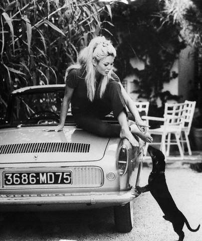 Black and White Prima Darling