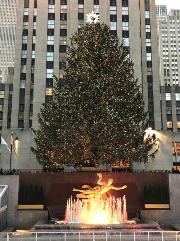 Rockefeller Center Christmas Tree Prima Darling