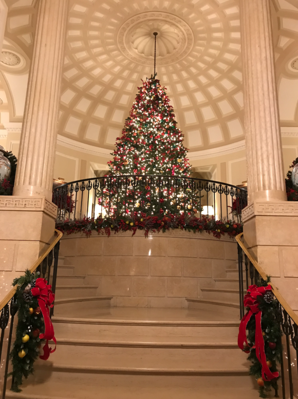 Tree at The Union Club Christmas Tree prima Darling